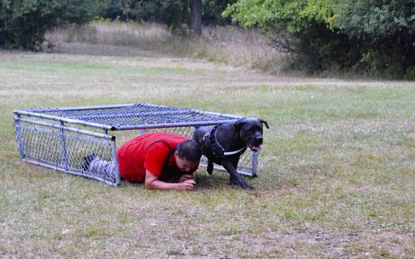 A contestant crawls under the fence with his pit bull terrier after finishing the 1.5 mile trail run. The fence crawl is the last obstacle in the course before the finish line.