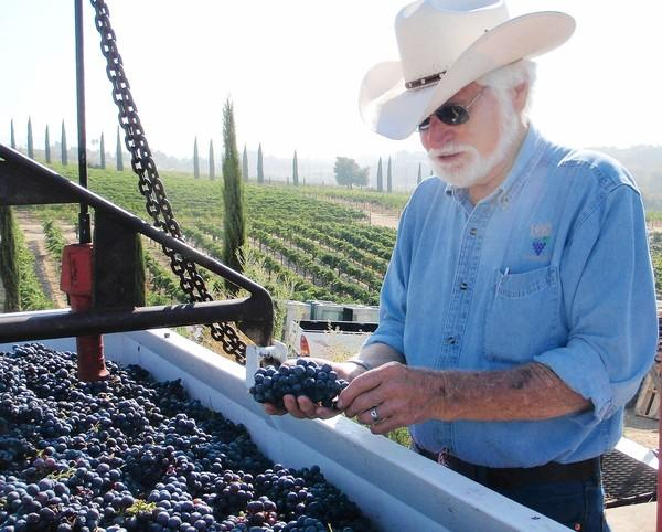 Joe Hart examines the season's harvest at his Temecula family winery, which produces 4,000 cases a year.