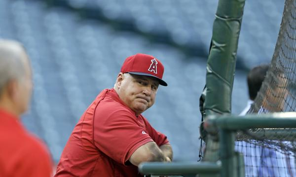 Will longtime Angels Manager Mike Scioscia be part of the team's plans in 2014? Scioscia still has five years left on his current contract.
