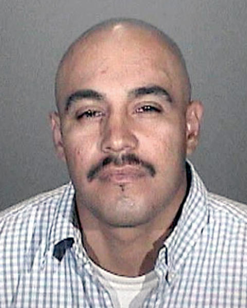 Ronal Perez, a reputed gang member, was arrested on suspicion of graffiti and violating conditions listed in a citywide injunction against the gang Toonerville.