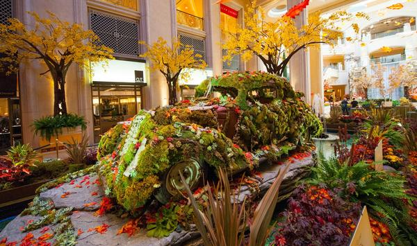An old car covered in plants forms the centerpiece of a new, eco-friendly atrium display.