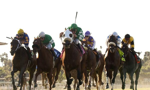 Making horse racing more attractive and accessible to Southern California sports fans has been one of Santa Anita Park's primary goals.