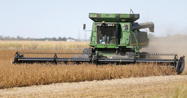 Dale Borgen, of Glasgow, Mt., combines a field of soybeans north of Aberdeen owned by Ty Edwards Tuesday. photo by john davis taken 10/1/2013