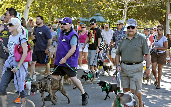 Thousands of dogs and their owners came to raise funds for the Pasadena Humane Society at the Rose Bowl on Sunday, Sept. 29, 2013.
