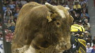 Las Vegas: Bull riders to compete for $1 million at world championship