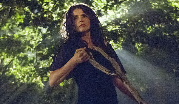 Julia Ormond stars in 'Witches of East End'
