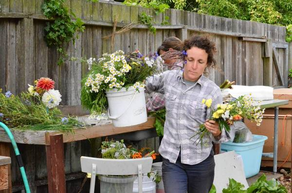 Caitlyn Galloway, who runs a small-scale commercial farm in a residential San Francisco neighborhood, is, like many of California's urban agriculture practitioners, plagued by a key uncertainty: She is on a month-to-month lease with a landlord who must recoup the lot's steep property taxes and may soon sell or develop.