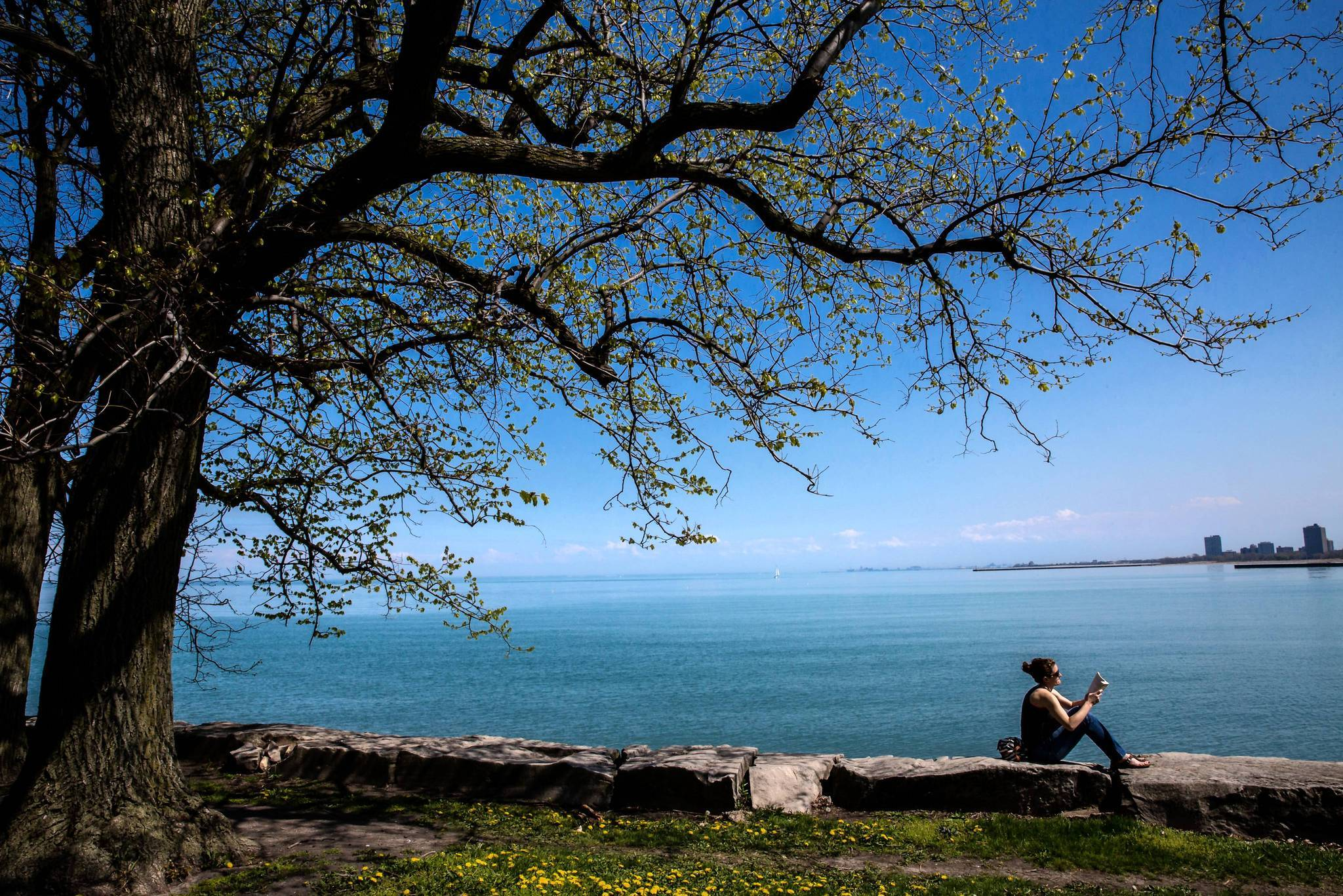 Jessie Newton reads a book at Promontory Point in Hyde Park in Chicago on Wednesday, May 8, 2013.