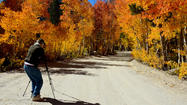 Daily Deal: Find the best fall colors with Eastern Sierra guide