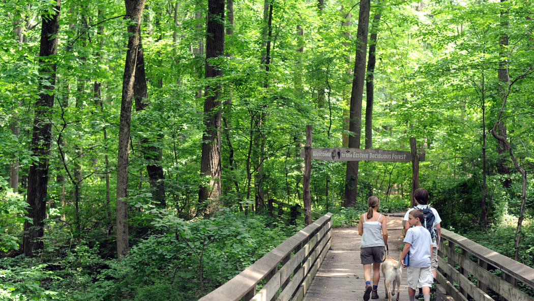 Family Hiking Trails Family-friendly Hiking Trails