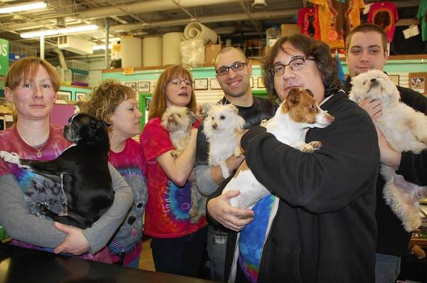 From left: Jennifer Lewin, Molly Grimm, Maureen Cate, Michael Williams, Gerry O'Connor and Greg Gordon at Dog Patch Pet and Feed. The business has placed more than 600 rescue dogs and cats in homes in the last three years.