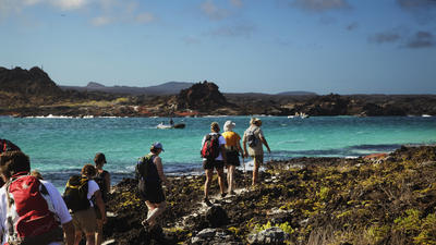 Galapagos cruises offer beautiful paradise in the 'middle of nowhere'