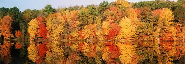 Fall foliage can be breathtaking in the Lehigh Valley region.