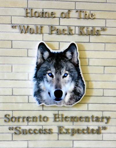 The graphic of a wolf at Sorrento Elementary cost $1,560.