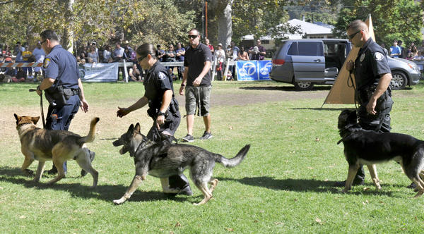 The Fifth Annual Glendale K-9s in the Park on Saturday, October 12, 2013 at Verdugo Park in Glendale. The free, family oriented and dog-friendly event ran from 11:00 am until 4:00 pm.