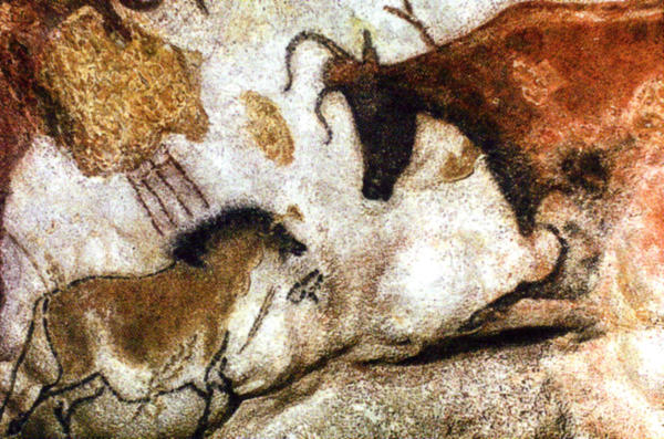 In caves in Spain and France, prehistoric man left paintings on the walls of the animals he saw. Now new research indicates that many of these paintings were done by women.