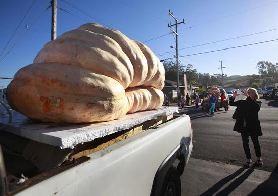 The 1,985-pound pumpkin that won the Safeway World Championship Pumpkin Weigh-Off in Half Moon Bay, Calif.