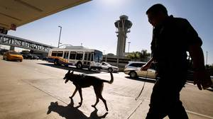 Probe of LAX dry-ice bombs focuses on employees
