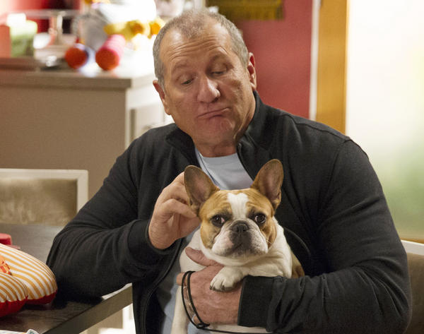 """Modern Family"" is popular among the young and affluent. Here, Ed O'Neill is in a scene from the sitcom."
