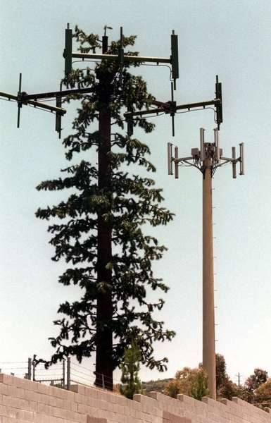 Vintage late-1990s cellphone towers in Sunland. Surely, 15 years later, we can do better than this?