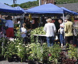 People check out the produce during a recent Collinsville Farmers Market.