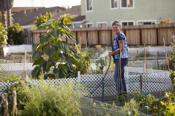 Carlina Thomas waters her plot at the community gardens in Huntington Beach on Friday, July 26, 2013.