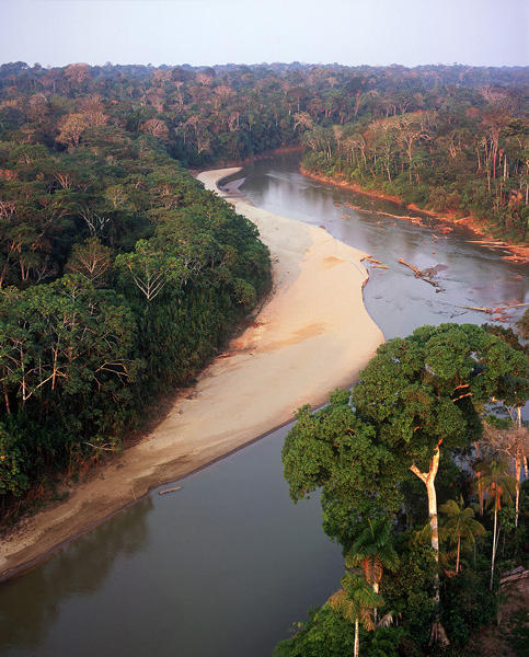 Forests along the Los Amigos River in southeastern Peru. (c) Antonio Vizcano, permission granted. MANIPULATION...