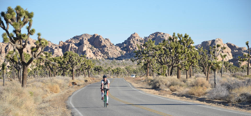 """The path is clear for this cyclist on <a href=""""http://www.nps.gov/jotr/index.htm"""" target=""""_blank"""">Joshua Tree National Park</a>'s main artery, Park Boulevard. Shot in 2012."""
