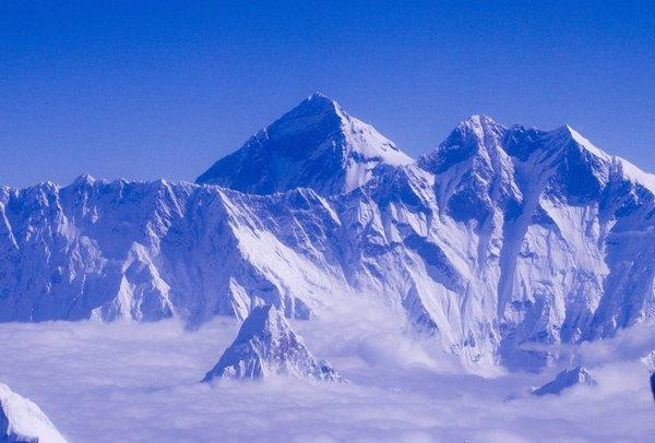 Does the Yeti really wander the Himalayas? A geneticist analyzes DNA.