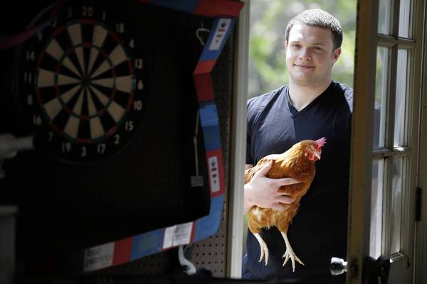 Lake County government officials have propsed to loosen requirements for residents to keep the chickens and bees in unincorporated areas. Here, Sam Spitz, of Northbrook, poses with one of the family chickens.