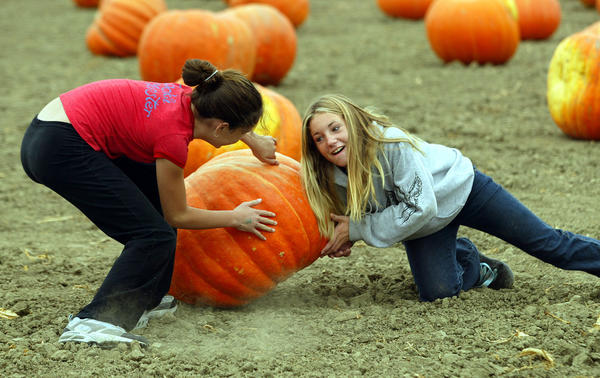 Two girls try to turn over a giant pumpkin while visiting the Faulkner Farm pumpkin patch in Santa Paula. Photo taken in 2004.