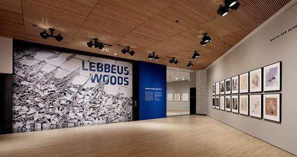 An exhibit at the San Francisco Museum of Modern Art this year. The museum's capital campaign raised $181 million in donations last year, representing a 410% increase over 2011.