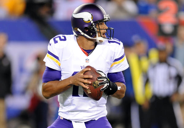 Minnesota Vikings quarterback Josh Freeman drops back to pass against the New York Giants during the first half at MetLife Stadium.