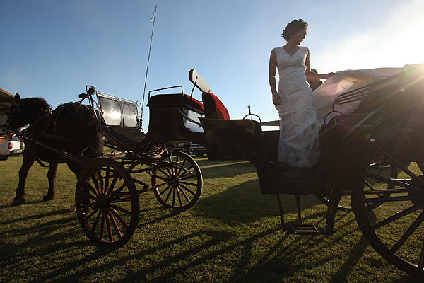 dairy farm wedding