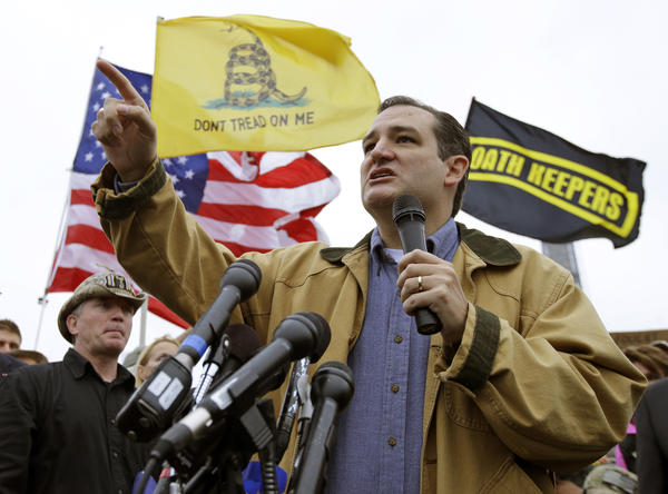 Sen. Ted Cruz (R-Texas) speaks at a rally in front of the World War II Memorial in Washington.