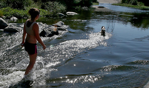 Glendale resident Sarita Vidal and her springer spaniel Jeni cool off in the Glendale Narrows area of the Los Angeles River.