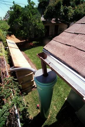 To protect against mold, be sure your gutters are clean and not leaking.