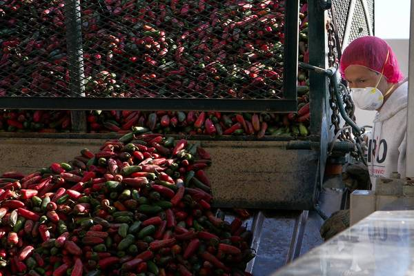 A Huy Fong Foods employee oversees chiles being unloaded at the company's Sriracha-producing plant in Irwindale. A judge's ruling allows the factory to continue producing the hot sauce, despite neighbors complaining of burning throats and eyes from the smell.