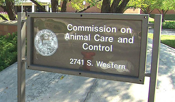 Headquarters of the Chicago Commission on Animal Care and Control.