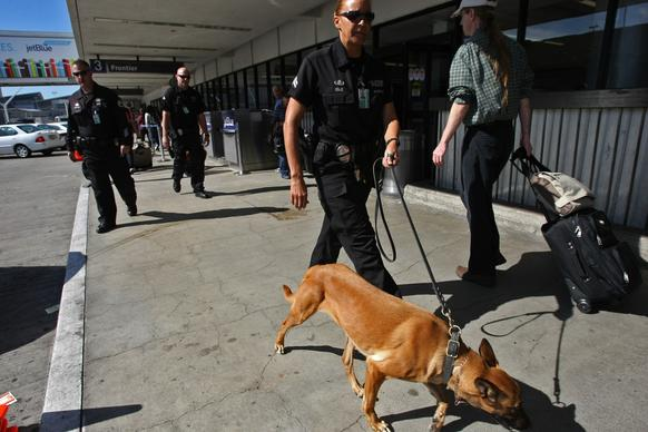 A Los Angeles police officer walks with her bomb sniffing dog at Terminal 3 at the Los Angeles International Airport on Saturday.