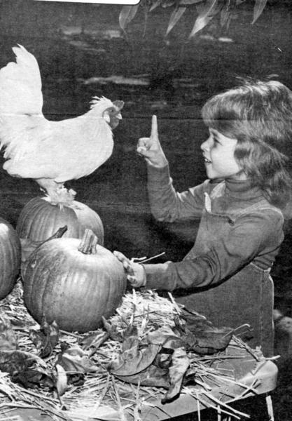 Meghann Collins, 4, tells Gregory Peck, the mascot of the Tiny Tots preschool program at the La Canada Youth House, to stay on his pumpkin perch in this photo taken in November 1983.