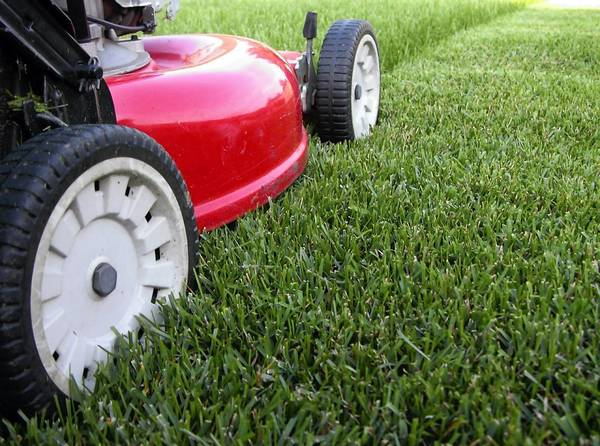 Care for your lawnmower in the fall for optimal condition in the spring.