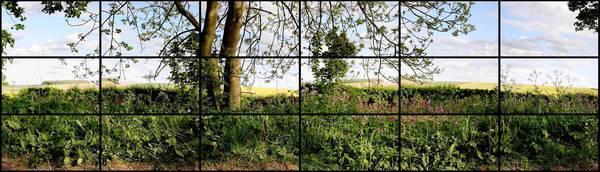 "David Hockney's ""Rudston to Kilham Road, 5 p.m."""