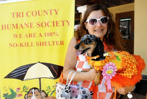 Nefertiny, a Dachshund owned by Erica Kenwood from Ft. Lauderdale, won first prize in the Happy Dog Contest that was a fundraiser for the Tri-County Humane Society in Boca Raton. Erica is a flight attendant and Nefertiny is an accomplished tourist, having traveled to 16 European countries already.