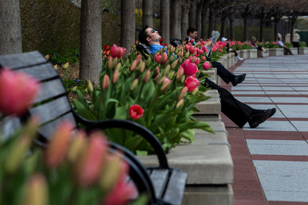 John Profita, 28, center, enjoys warm weather as he takes short break along the Chicago Riverwalk on Monday, April 29, 2013.