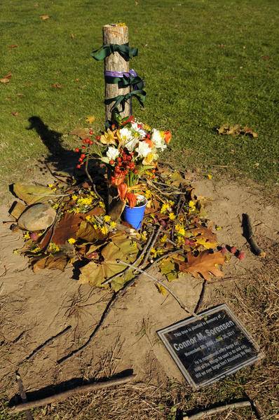 A tree planted in memory of a Duffy Elementary School student, Connor Sorensen, was vandalized over the weekend. Sorensen passed away in an accident in June 2011. The tree was cut down and dragged to the nearby basketball court and left by the vandals.