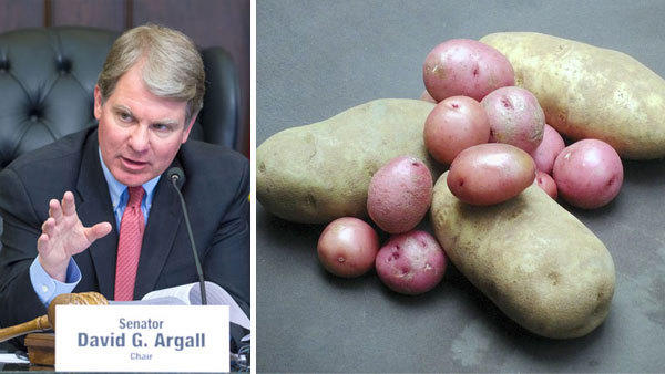 "State Sen. David G. Argall, a Republican from the 29th District, is looking to eliminate an ""onerous restriction"" keeping farmers from selling potatoes in 8-pound bags. Argall has introduced legislation to overturn a law that forces farmers to sell potatoes only in bags of weighing less than 3 pounds and in bags weighing 3, 5, 10, 15, 20, 25, 50 and increments of 100 pounds. The Senate on Tuesday unanimously approved his proposed legislation, which now moves to the House for a vote."