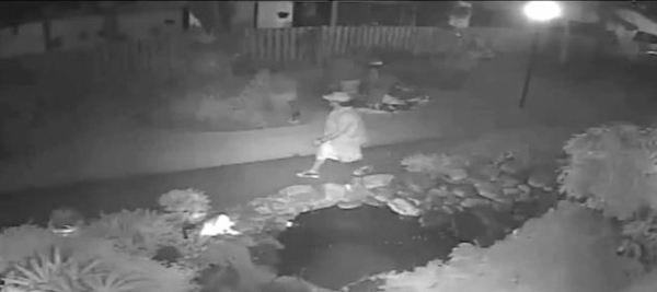 Hallandale Beach Police are searching for this burglary suspect