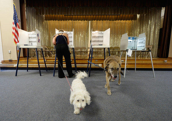 A white bichon frise named Lambchop and a mutt named Coffee wait for owner Claudia Kunin as she votes in a Los Angeles election earlier this year. On Tuesday voters in an Assembly district largely in the San Fernando Valley will cast ballots in a special election.