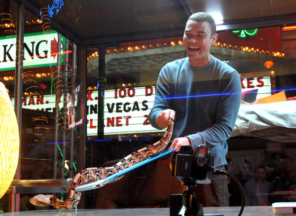 "Renowned animal adventurer and venom expert Donald Schultz prepares for a stunt in 2010 called ""Venom in Vegas"" outside O'Sheas Casino in Las Vegas. Schultz pleaded guilty Tuesday to one count of violating the Endangered Species Act by offering to sell, and selling, two live desert monitor lizards."